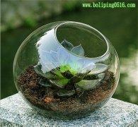 苔藓微景观斜口专用缸 欧式花器 多肉花瓶 婚庆花瓶